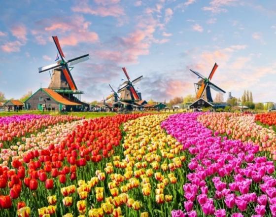С 21 марта по 19 мая Кекенхоф ждет ваших туристов!