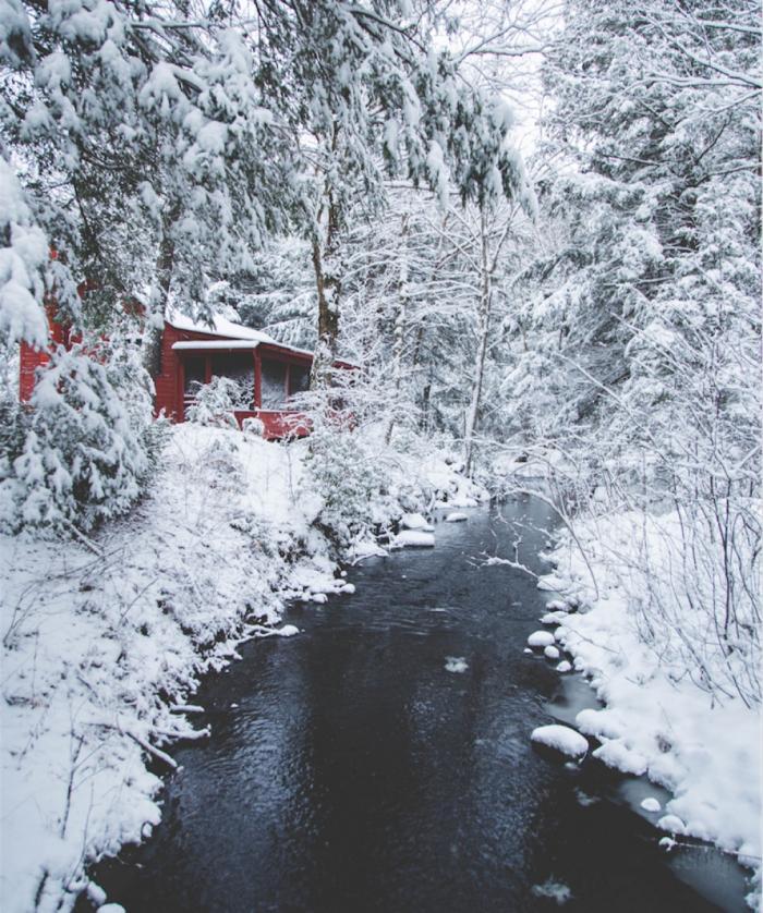 Домик в зимнем лесу, штат Массачусетс, США.