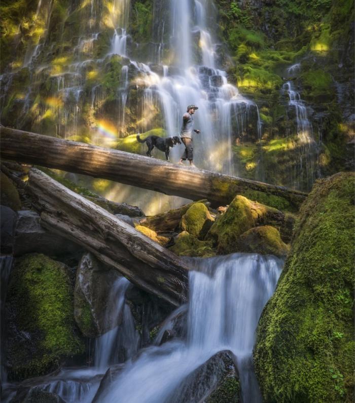 Лесной водопад в Орегоне.