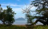 Остров Борнео. Заповедник Бако