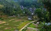 Остров Ява. Деревня Нага