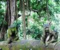 Остров Бали. Обезьяний лес