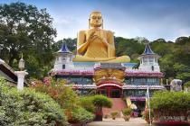 Почему отменяют экскурсии по Шри-Ланке