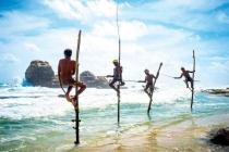 "Туристы ""в отчаянии"" на Шри-Ланке. Кто виноват?"