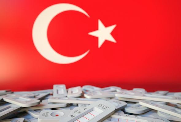 Власти Турции пообещали отменить тесты для украинских туристов