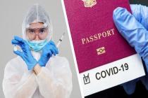 Когда мы получим ковидные паспорта?