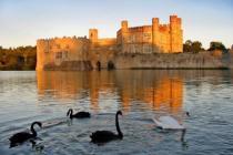 Туристам предлагают заглянуть в гости к Королеве Британии