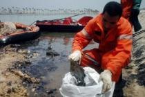Хургада: нефть забила сразу в пяти местах севернее курорта, экологи бьют тревогу