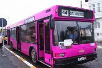 В Турции появятся розовые автобусы для женщин