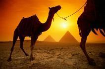 Гид-переводчик из Чехии похищена в Египте