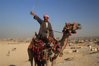 Десятки экскурсий с Синая в Каир отменены из-за протестов египтян