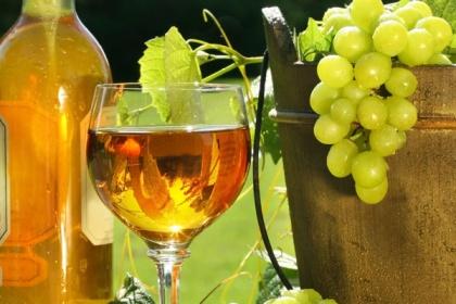 В Крыму планируют развивать винный туризм. КрымФАН.