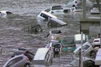 В Японии на берег выбросило более 200 тел погибших
