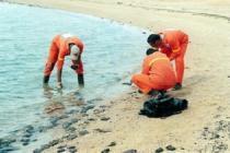 Египет: кувейтский танкер слил нефть в Красное море рядом с Хургадой