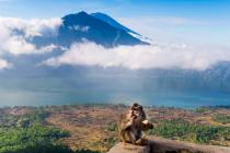 На Бали эвакуировали 42 тысячи человек