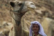 Бедуины перекрыли две автотрассы в Египте из-за спора с полицией