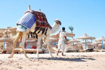 Отели Египта по-прежнему пустуют