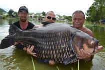 Французских пенсионеров арестовали на Пхукете за ловлю редких рыб