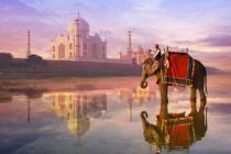 МАУ запустила регулярные рейсы в Индию