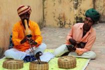 Электронная виза в Индию подорожала