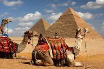 Разрешат ли россиянам чартеры на египетские курорты?