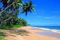 Шри-Ланка подгорает, в чём причина?
