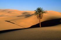 Приход к власти в Тунисе исламской партии не повлияет на туризм